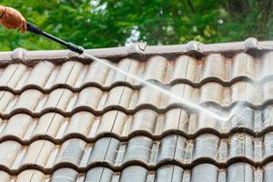 Cleaning the roof with a petrol pressure washer